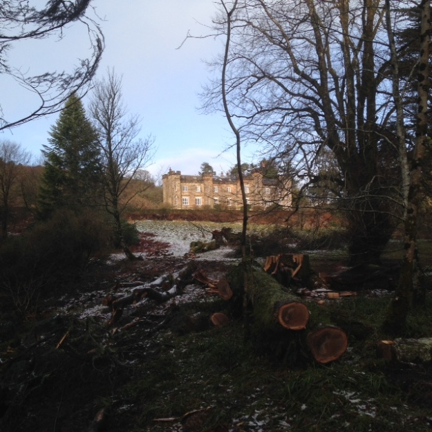 Torrisdale Castle showing through the new gap caused by a fallen tree